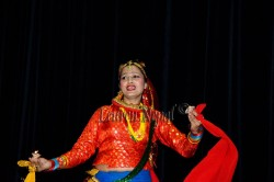 अपाङ्गता सहयोगार्थ एनआरएन बेल्जियमको सांस्कृतिक कार्यक्रम