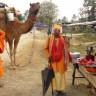 उँटको नेपाल यात्रा