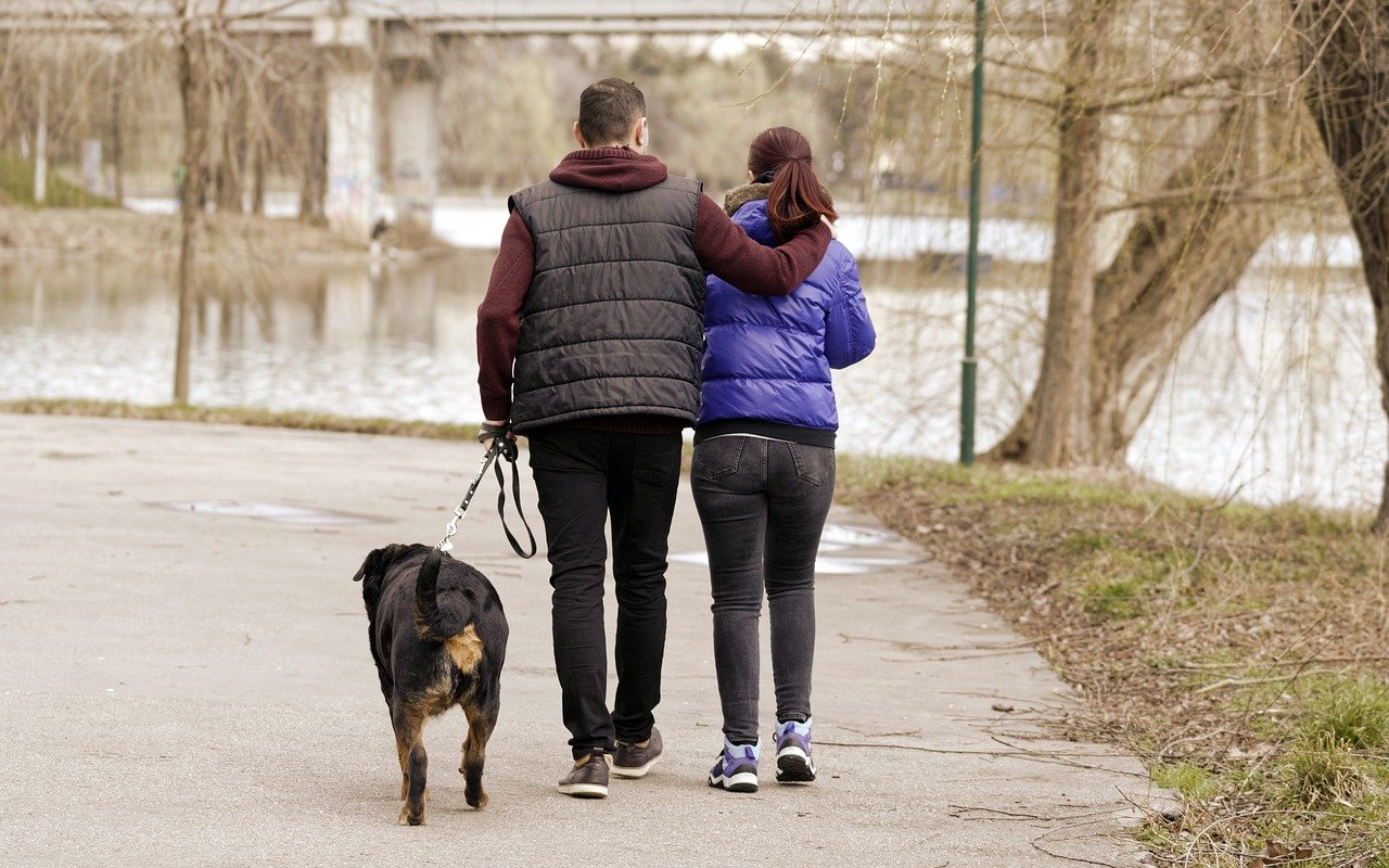 young couple with a dog